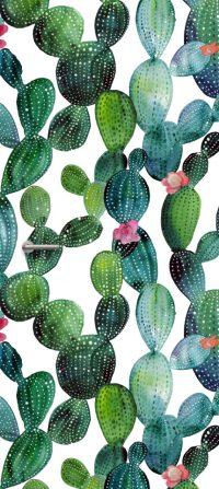 deursticker cactus